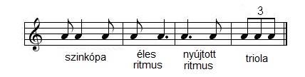 Kotta specialis ritmusok.jpg